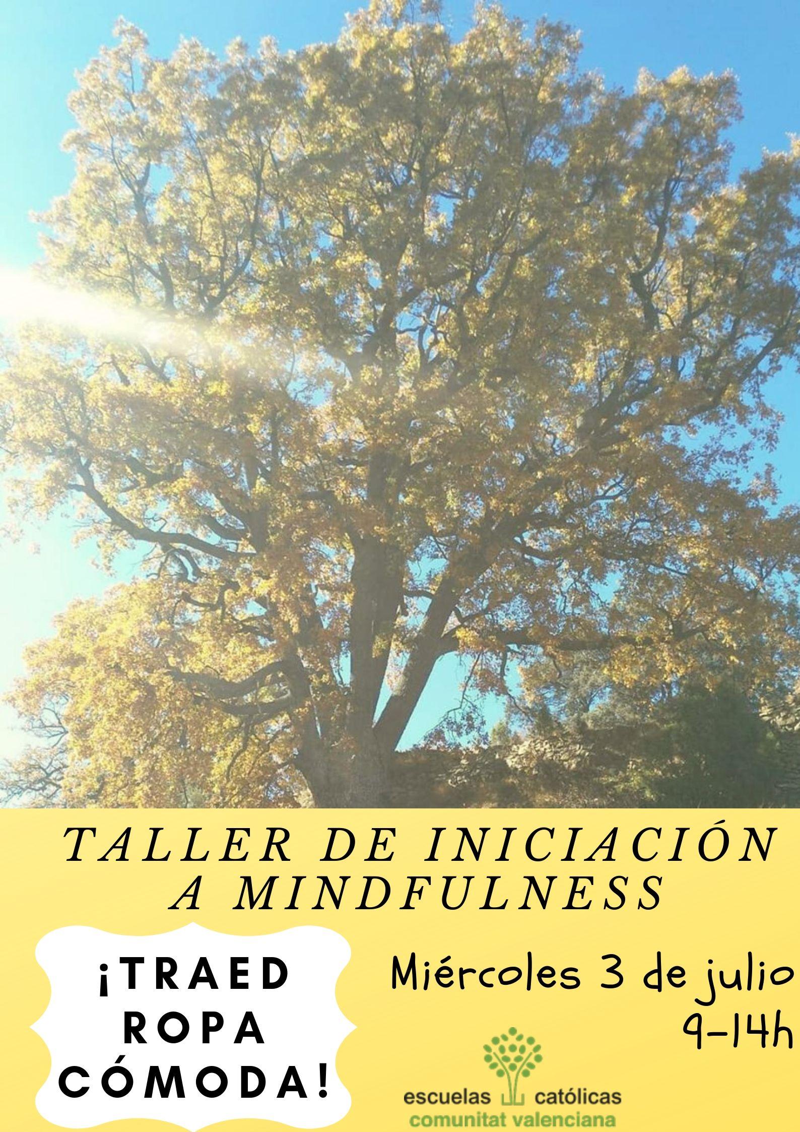 taller mind